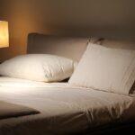 【ホンマでっかTV】寝る時は真っ暗派?少し明るく派?照明の影響とは【5月4日】