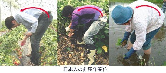 日本人の前屈作業位