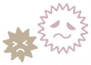 加湿器のカビ発生を抑えるコツ