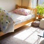 寝室に蚊がいるときの対策|見つけ方や退治のコツ・侵入を防ぐには