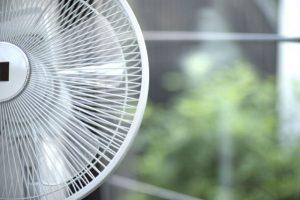 蚊 扇風機