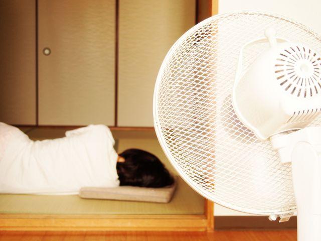 扇風機で蚊の被害を予防するには?
